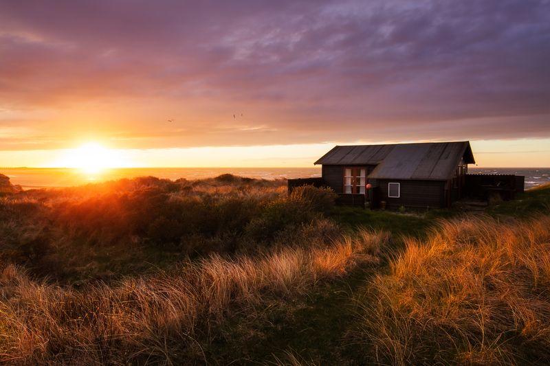 Urlaubsplanung: So findet ihr das schönste Ferienhaus in ganz Dänemark